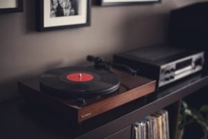 Why Vinyl Sounds Warmer