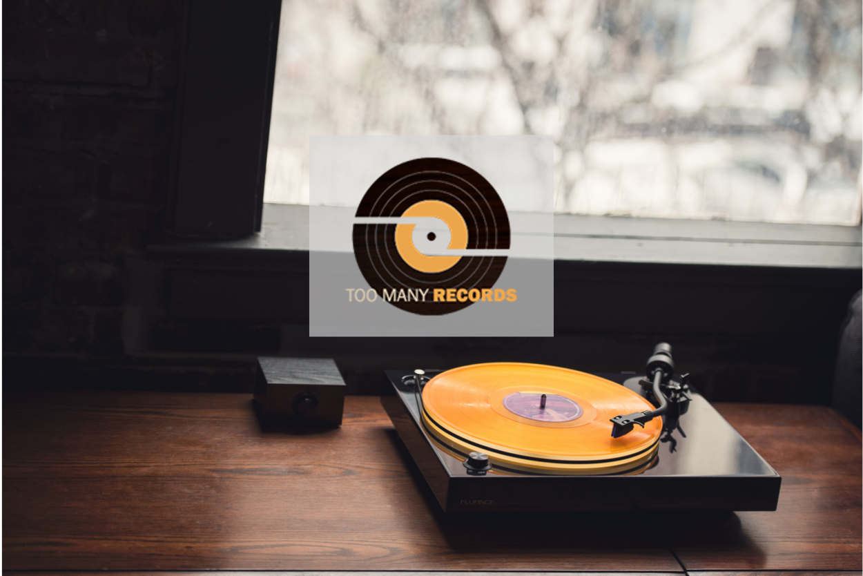 Too Many Records Reviews Fluance RT85 Turntable